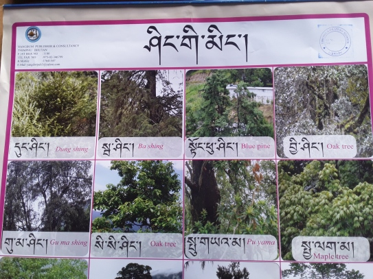 Photo: Nim Dorji (Teacher)